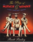 Picture of The Plays of Miracle & Wonder